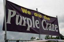 Holly Springs Purple Craze