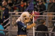 Football Friday fan cam (Nov. 8, 2013)