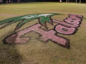 FAN CAM. Apex High School visits Green Hope High School and comes up short, losing 23-42. Friday October 31,  2014, Cary NC.  (Photo: Karl Fisher / WRAL contributor)