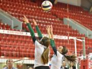 Volleyball: Cardinal Gibbons vs. West Henderson (Nov. 1, 2014)