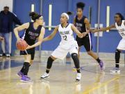 Girls Basketball: Riverside vs. Hillside (Jan. 9, 2014)