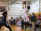 Girls Basketball:  Hillside vs Southeast Raleigh(Mar 3,  2015)