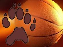 Wakefield Basketball Logo - Generic Graphic