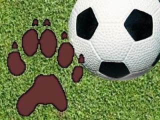 Wakefield Soccer Logo - Generic Graphic