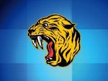 Hobbton High School logo