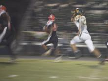 Pine Forest vs. South View